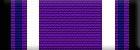 Purple Heart (Level 1)